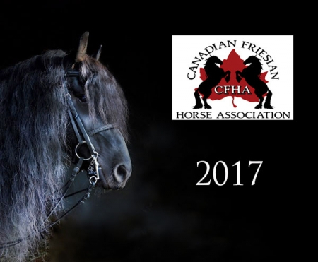 canadian friesian horse association 2017 calender cover